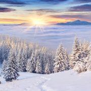 Schöne Weihnachten wünscht der Gewerbeverein Gaiserwald.